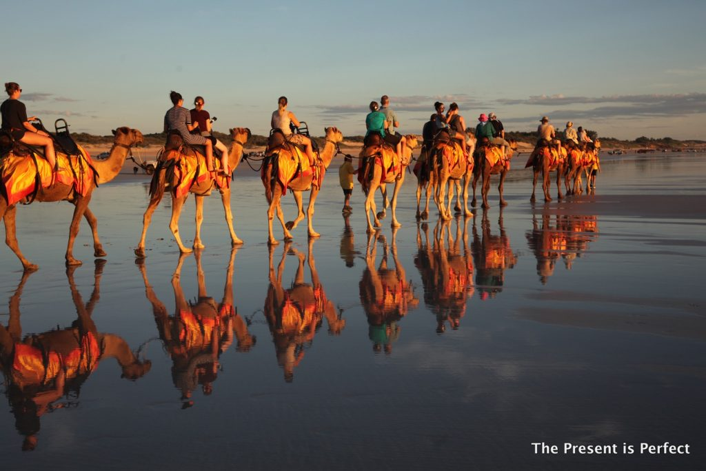 Camel ride in Broome