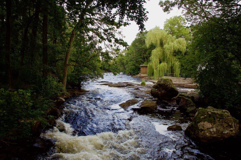 Mörrum river